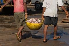 Descarga de un barco pesquero en el puerto de la India meridional Los trabajadores llevan una cesta con los pescados para pesar Fotos de archivo libres de regalías