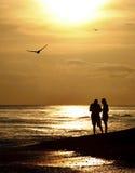 Descascamento no por do sol em Sanibel Imagem de Stock Royalty Free