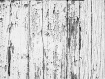 Descascando o fundo de superfície de madeira branco dos alugueres da pintura foto de stock