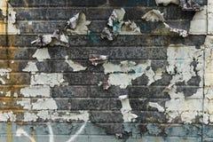 Descascando a parede pintada 0094 Imagens de Stock Royalty Free