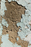 Descascando a pintura azul no emplastro Imagem de Stock