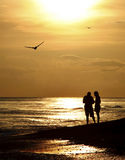 Descascarado en la puesta del sol en Sanibel Imagen de archivo libre de regalías