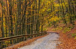 Descend road turnaround in autumn forest. Lovely nature scenery with lots of colorful foliage on hillside Royalty Free Stock Photography
