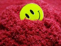 Descendant dans l'amour, un visage heureux en sable rouge représentant l'amour Image stock
