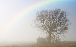 Descending fog in autumn with rainbow Royalty Free Stock Images