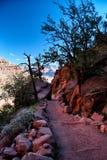 Descending into the Grand Canyon Royalty Free Stock Photos