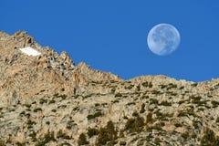 Descending moon at sunrise, Inyo National Forest, Sierra Nevada Range, California Royalty Free Stock Images