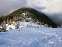 Descending path. Footpath on a snowy ridge descending towards the forest limit and low clouds Royalty Free Stock Photo