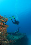 Descending Scuba Divers Stock Image