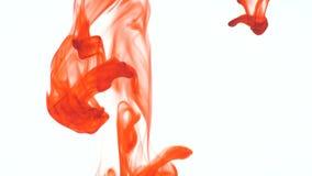 Descenso anaranjado de la tinta del color de comida en agua en el fondo blanco