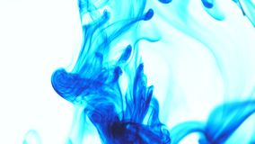 Descenso azul de la tinta del color de comida en agua en el fondo blanco