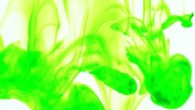 Descenso de la tinta del color de comida verde en agua en el fondo blanco