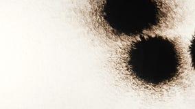 Descenso de la tinta negra Salpicadura de la tinta en el fondo blanco Chapoteo negro que se amplía en el contexto del Libro Blanc almacen de metraje de vídeo