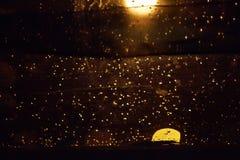 Descenso del agua en el extracto obscurecido del vidrio Fotografía de archivo libre de regalías