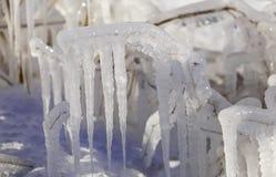 Descensos congelados del agua en la hierba y de los arbustos con un sol brillante del invierno Foto de archivo