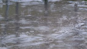 Descensos de la caída de la lluvia al pavimento que forma un charco metrajes