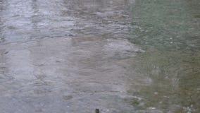 Descensos de la caída de la lluvia al pavimento que forma un charco almacen de video