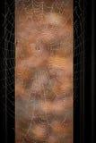 Descensos de rocío en un Web de araña Imagen de archivo