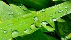 Descensos del agua Foto de archivo libre de regalías
