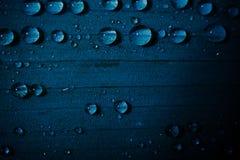 Descensos del agua en una hoja Fotos de archivo libres de regalías