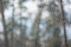 Descensos del agua en ventana Visión a través de la ventana a la madera, fondo del bosque Fotografía de archivo libre de regalías