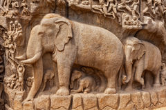Descent of the Ganges and Arjuna's Penance, Mahabalipuram, Tamil Royalty Free Stock Photos