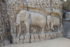 Descent of the Ganges, Mamallapuram, India. Descent of the Ganges, sacred elephants, scene of life. Mamallapuram, India stock photography