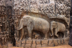 Descent of the Ganges Relief Sculpture Royalty Free Stock Photos
