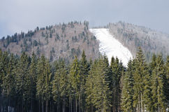 The descent from the ski slopes in the resort of Bukovel - Ukraine. Winter recreation and sport. Stock Photography