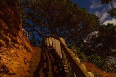 Descent to the sea, Whangaparaoa Peninsula, New Zealand Royalty Free Stock Photos