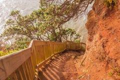 Descent to the sea, Whangaparaoa Peninsula, New Zealand Stock Photos