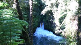 Descent from the Tutea Falls with GoPro. Kaituna rafting. New Zealand stock footage