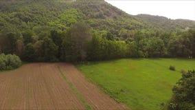 Descente vers le pré dans la distance d'une belles forêt et colline banque de vidéos