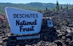 Deschutes国家森林 免版税库存照片