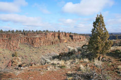 Deschutes River Canyon. The view from the edge of Deschutes River Canyon north of Tumalo, Oregon, is spectacular. Hiking access is via BLM land at the end of royalty free stock photography