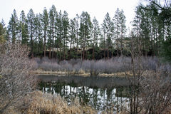 Deschutes River near First Street Rapids Stock Photo
