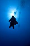 Descida do mergulhador no azul fotos de stock royalty free