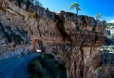 Descida em Grand Canyon Fotografia de Stock