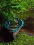 Descomposición lejos en el Amazonas Fotografía de archivo