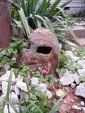 Descompresión del cráneo en un jardín de piedras fotografía de archivo libre de regalías