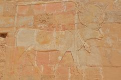 Descrições de Egito antigo Foto de Stock