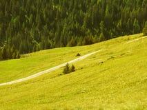 Descripción de las montañas tirolesas del sur Foto de archivo libre de regalías