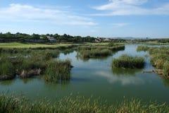 Descripción de un lago y de un campo de golf Foto de archivo libre de regalías