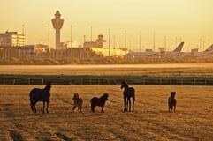 Descripción del aeropuerto Imagen de archivo