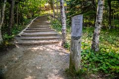 A description board for the trail in Acadia National Park, Maine. Acadia National Park, ME, USA - August 15, 2018: The Ocean Path Trail royalty free stock photo