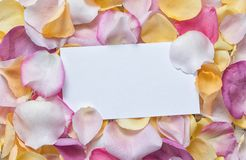 Rose-petals with the white sheet of paper. The place for the text. Greeting card stock images