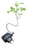 Description visuelle de l'électricité verte Images libres de droits