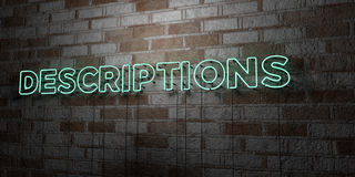DESCRIPTIONS - Glowing Neon Sign on stonework wall - 3D rendered royalty free stock illustration. Can be used for online banner ads and direct mailers Stock Images
