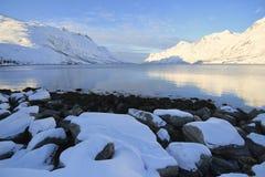 Descubra os fiordes de Ersfjordbotn Brygge fotografia de stock
