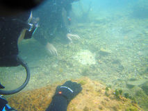 Descubrimiento subacuático fotografía de archivo